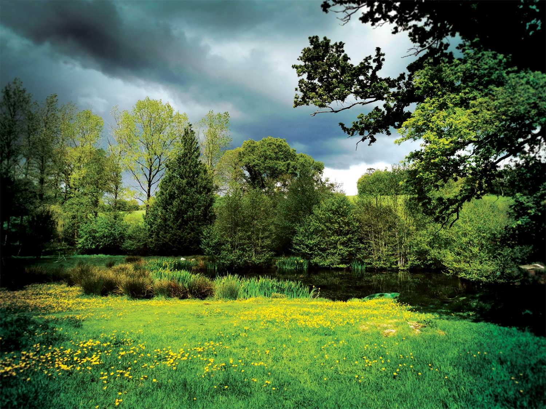 Nature-Bretagne